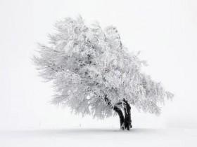 下雪发朋友圈唯美短句大全