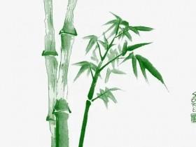 用竹子比喻人的作文素材4篇